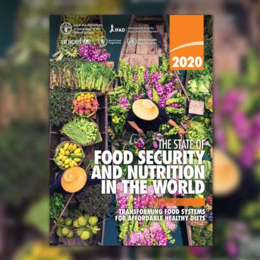 Élelmezésbiztonság és táplálkozás, 2020
